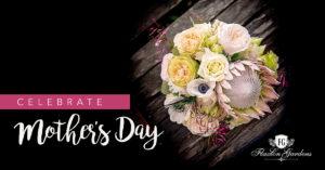 Mothers Day Sunshine Coast Hinterland